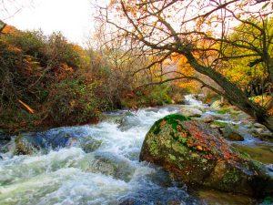 el rio Mediano en otoño en Soto del Real